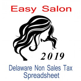 Delaware Non-Sales Tax Hairdresser Bookkeeping Spreadsheets for 2019 year end