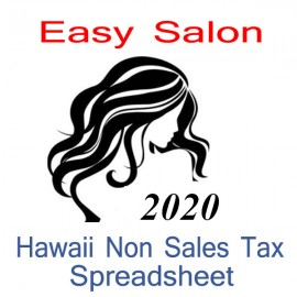 Hawaii Non-Sales Tax Hairdresser Bookkeeping Spreadsheets for 2020 year end