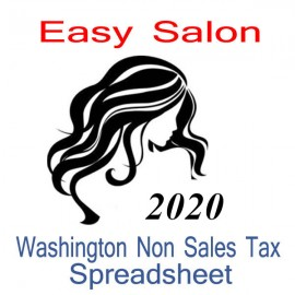Washington Non-Sales Tax Hairdresser Bookkeeping Spreadsheets for 2020 year end