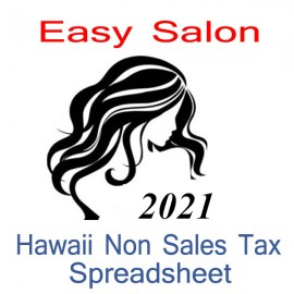 Hawaii Non-Sales Tax Hairdresser Bookkeeping Spreadsheets for 2021 year end