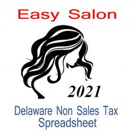 Delaware Non-Sales Tax Hairdresser Bookkeeping Spreadsheets for 2021 year end